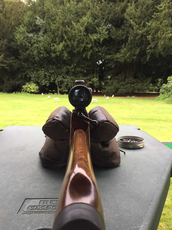Air Rifle Shooting - Focusing Events